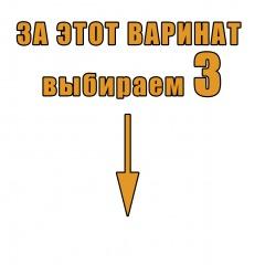 variant3
