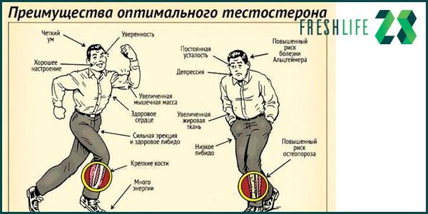 как-поднять-тестостерон