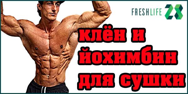 Программа тренировок с кленбутеролом стероиды как приобрести